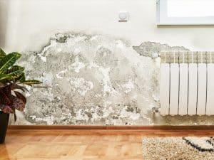 Fugtskader udbedres af Murerfirmaet Romvig